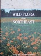 wild flora of the northeast