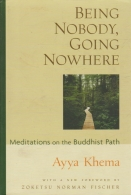 being nobody, going no- meditations on the buddhist path