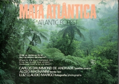 mata atlântica atlantic forest