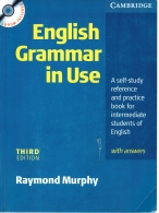English Grammar In Use with Answers SEM CD