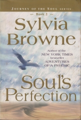 Soul's Perfection book 2