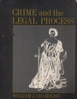 crime and the legal process